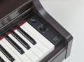 Yamaha YDP-163